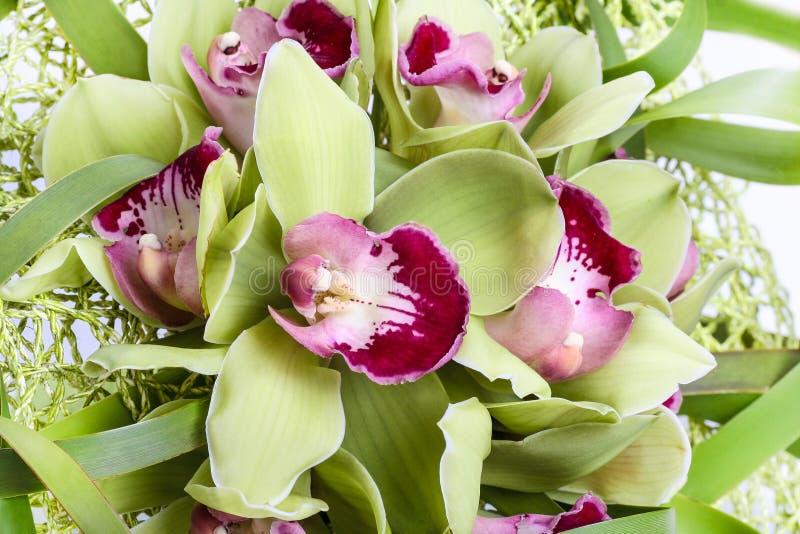 Mazzo dei fiori verdi dell 39 orchidea fotografia stock for Fiori verdi