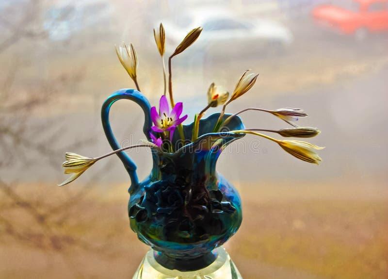 Mazzo dei primi fiori della molla in un vaso da fiori blu immagini stock libere da diritti