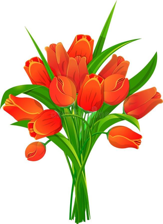 Mazzo dei tulipani rossi royalty illustrazione gratis