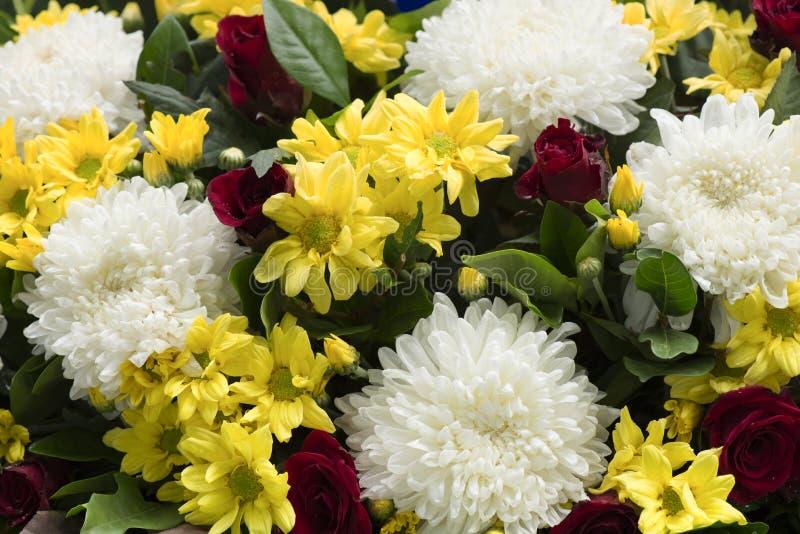 Mazzo del fiore di Dendranthemum fotografia stock libera da diritti