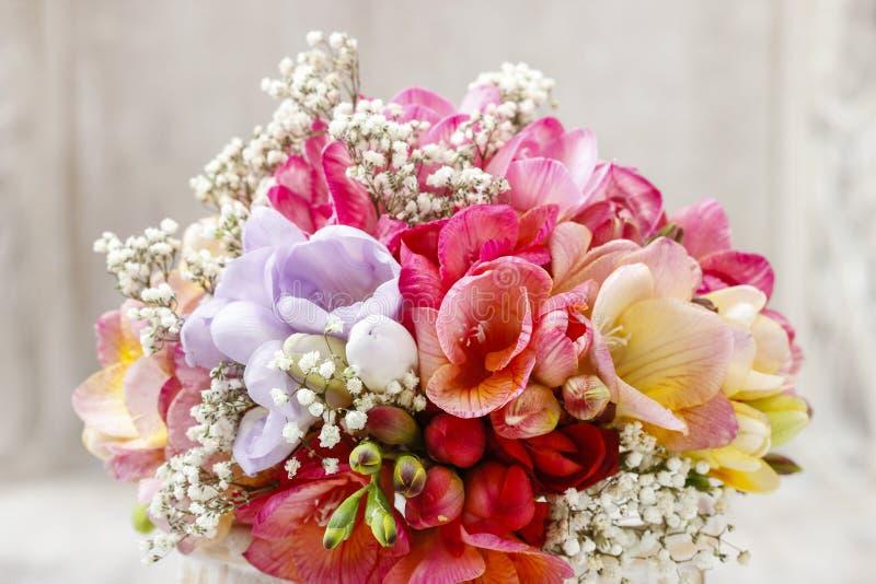 Mazzo del fiore variopinto di fresia immagine stock