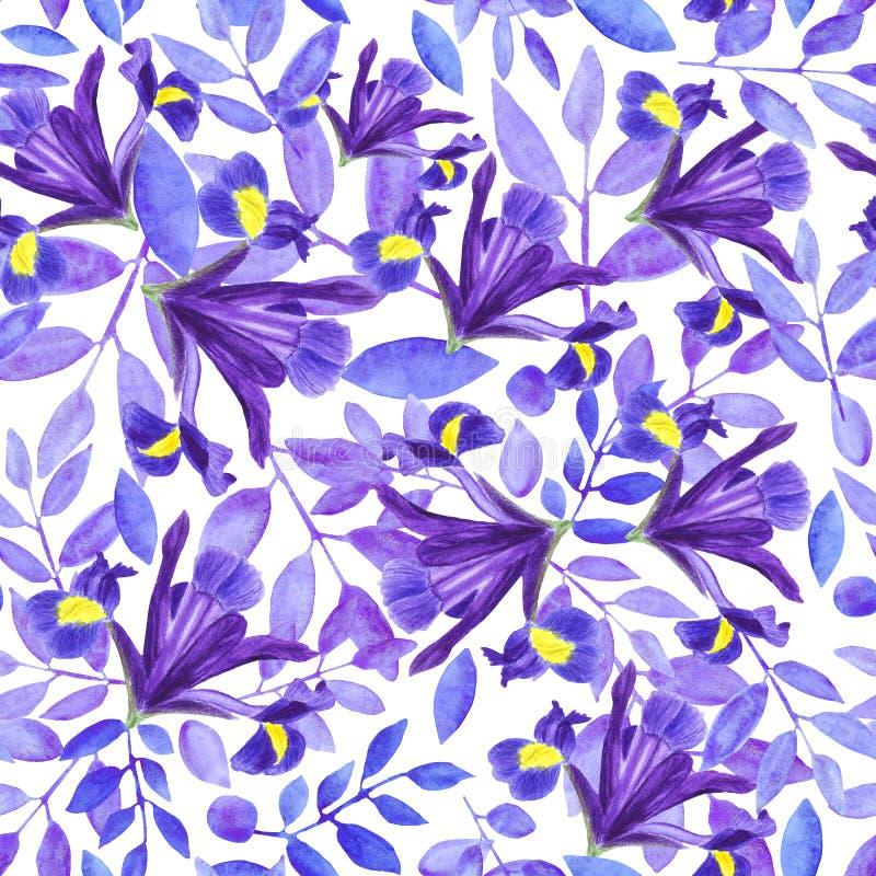 Mazzo dell'acquerello delle iridi, dell'illustrazione floreale disegnata a mano, dei fiori blu e delle foglie su fondo bianco illustrazione di stock
