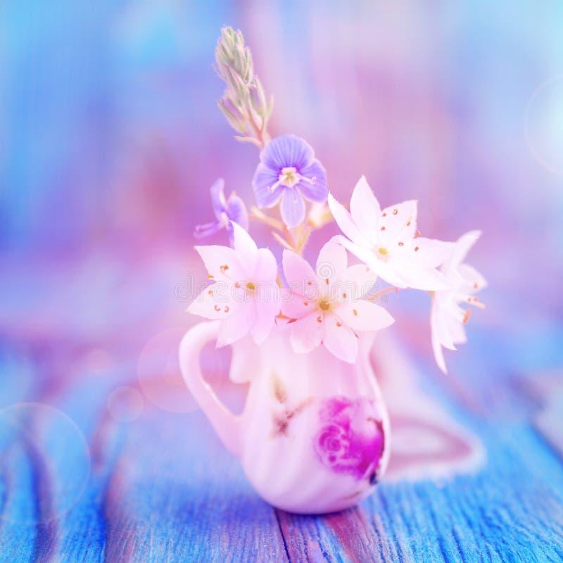 Mazzo dell'anemone, windflower in brocca miniatura e diminutiva Macro foto del primo piano, fuoco molle Fondo di legno colorato r fotografia stock libera da diritti