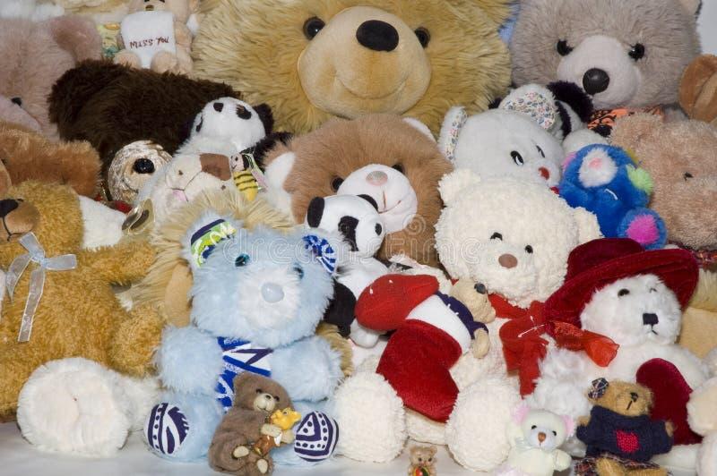 Mazzo dell'orso fotografia stock