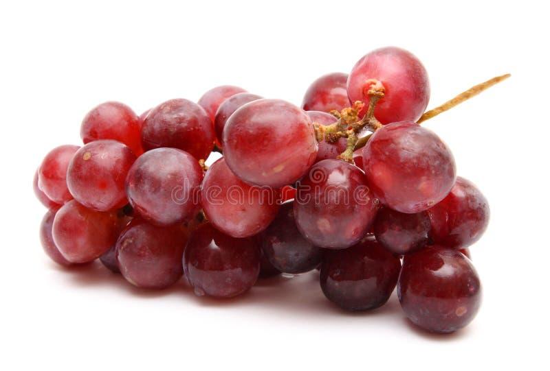 Mazzo dell'uva fotografie stock libere da diritti