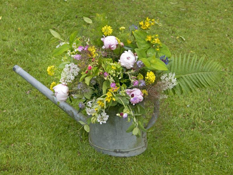Mazzo della peonia in giardino fotografie stock libere da diritti