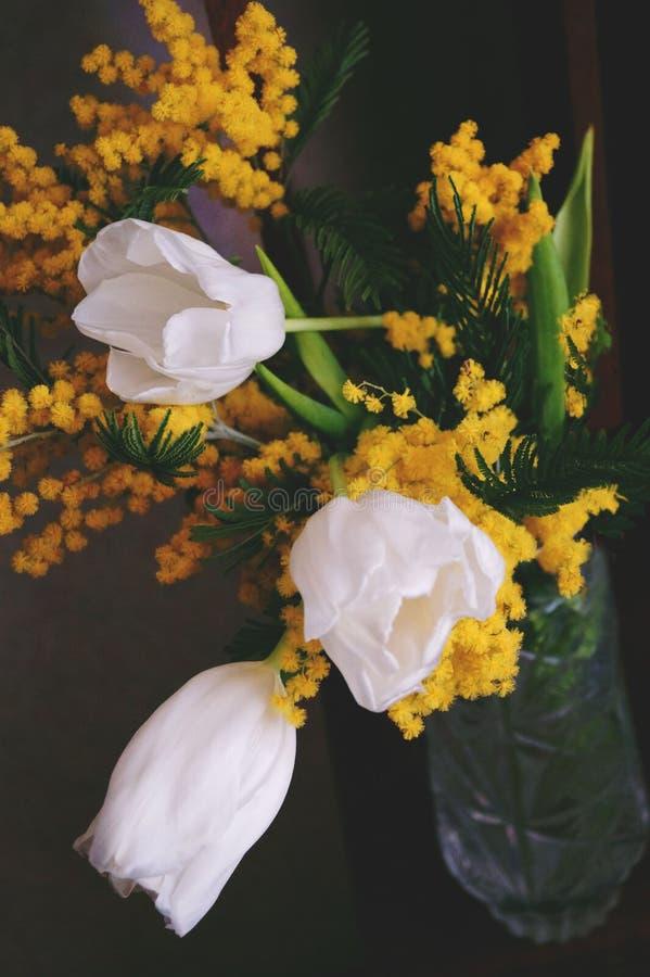 Mazzo della primavera dei tulipani bianchi fotografia stock libera da diritti