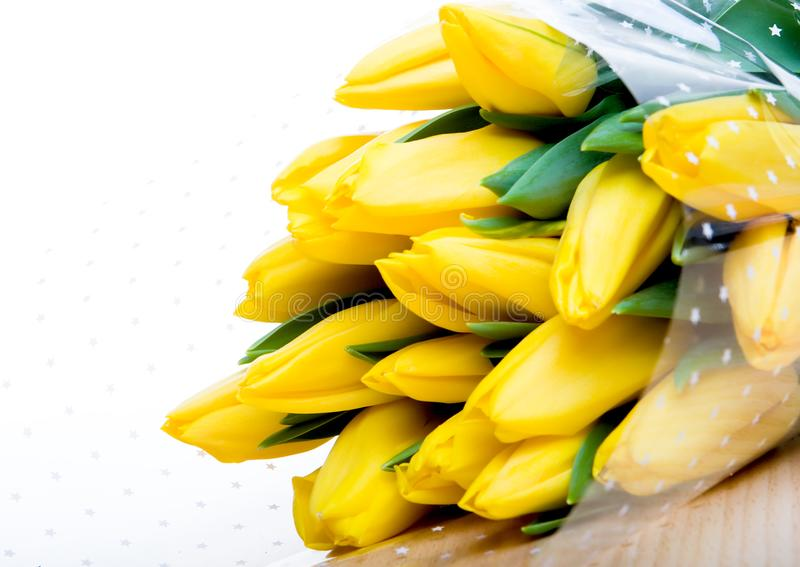 Mazzo della primavera fotografia stock libera da diritti