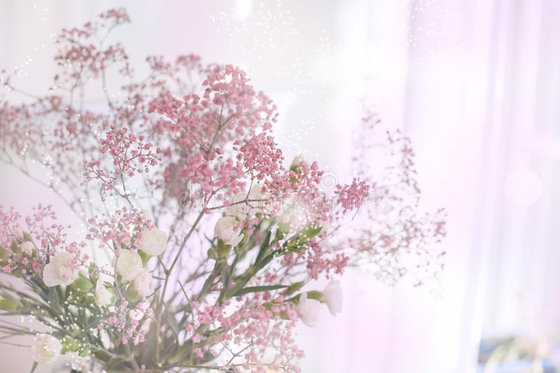 Mazzo della sorgente dei fiori Fondo dei colori vaghi Abbagliamento di colore scheda Spazio libero per testo immagini stock libere da diritti