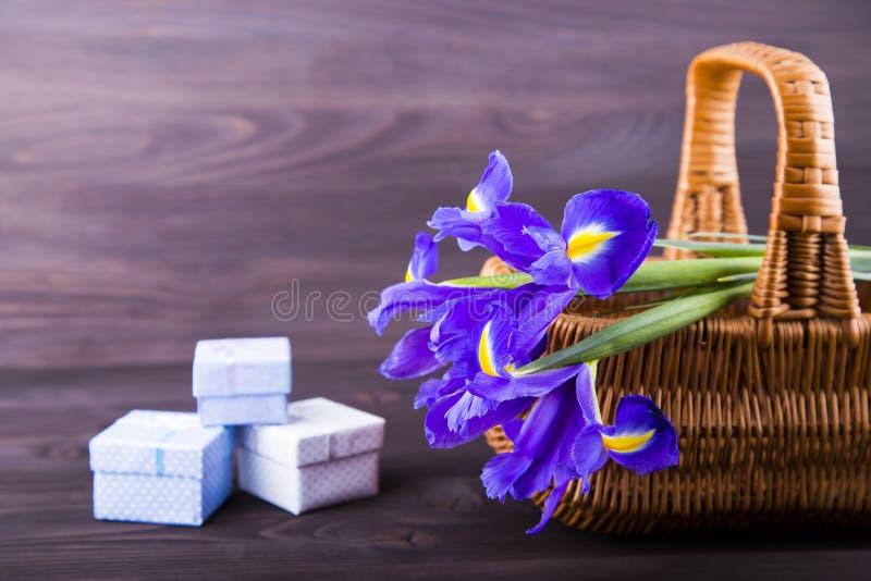 Mazzo delle iridi con i contenitori di regalo su fondo di legno scuro fotografia stock