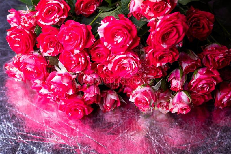 Mazzo delle rose di colore magenta con le bande bianche, fiori dei colori differenti in grandi numeri immagini stock libere da diritti