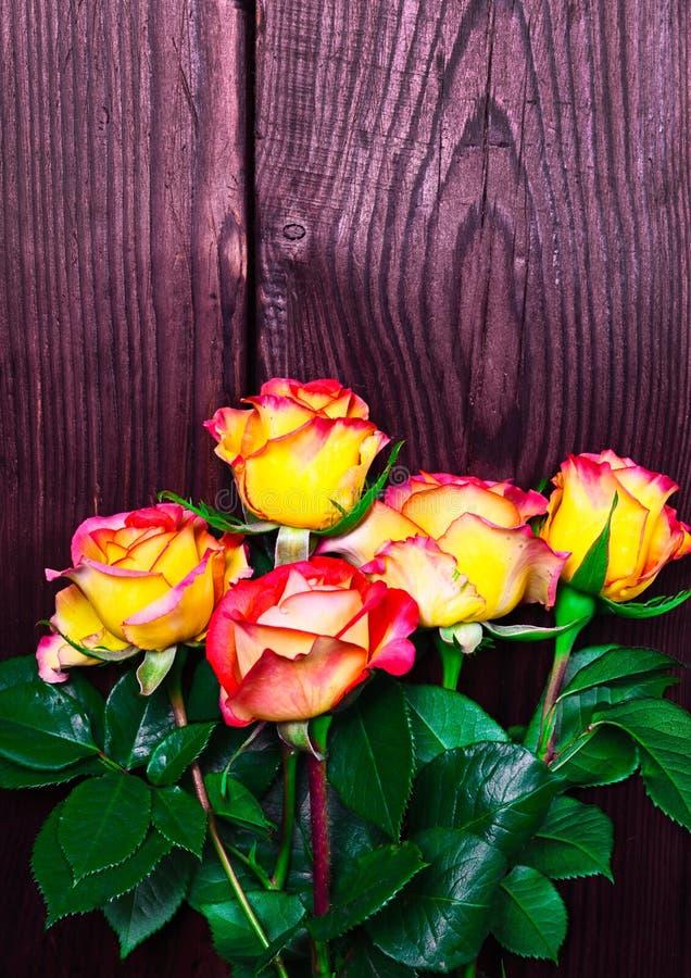 Mazzo delle rose gialle di fioritura con le foglie verdi immagine stock libera da diritti