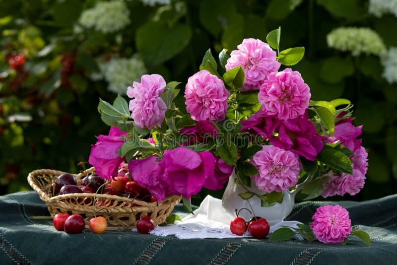 Mazzo delle rose selvatiche e della ciliegia fotografie stock libere da diritti