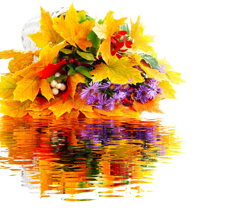 Mazzo di autunno con la riflessione dell'acqua fotografie stock libere da diritti