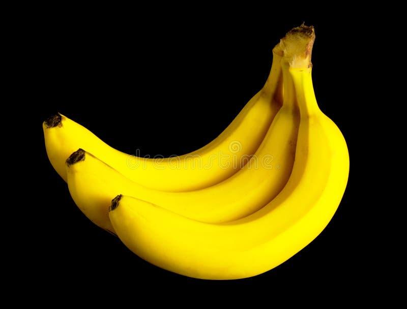 Mazzo di banane gialle fotografie stock