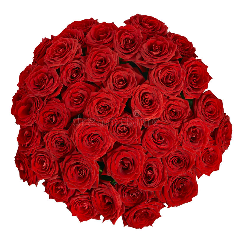 Mazzo di belle rose rosse su un fondo bianco con clipp immagini stock