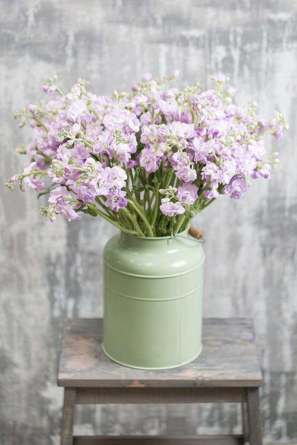 Mazzo di bello gillyflower lilla di colore, levkoy o del mattiola Fiori della primavera in vaso sulla tavola di legno Foto vertic fotografie stock libere da diritti
