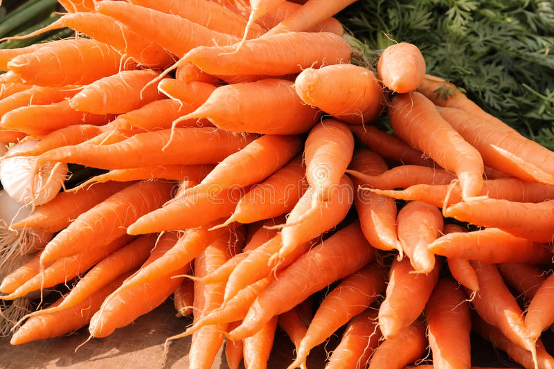 Mazzo di carote fresche fotografia stock