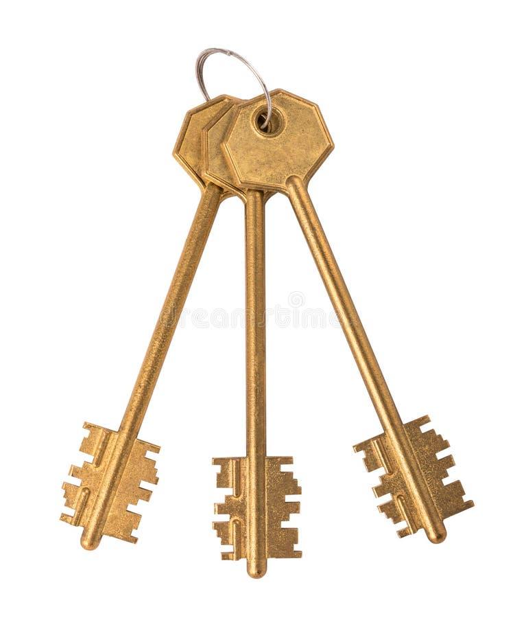 Mazzo di chiavi dorate sui precedenti bianchi fotografia stock libera da diritti