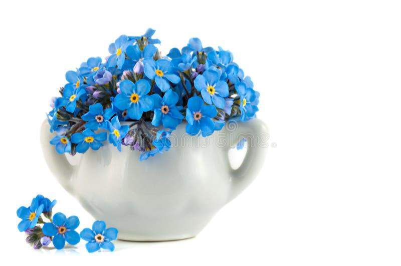 Mazzo di fiore blu di myosotis immagine stock libera da diritti