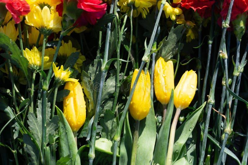 Mazzo di fiori vibranti che indicano vicino al monumento eterno della fiamma sul cimitero militare in onore del giorno della vitt fotografia stock libera da diritti