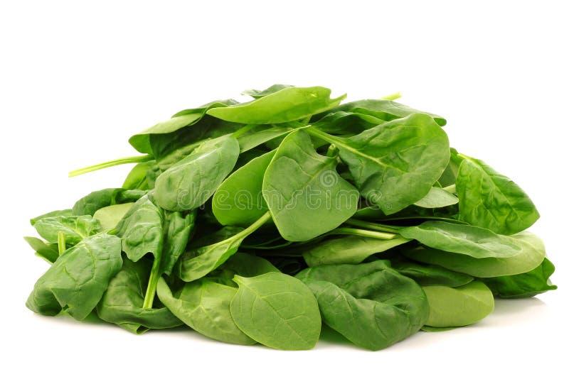 Mazzo di fogli freschi degli spinaci fotografia stock libera da diritti