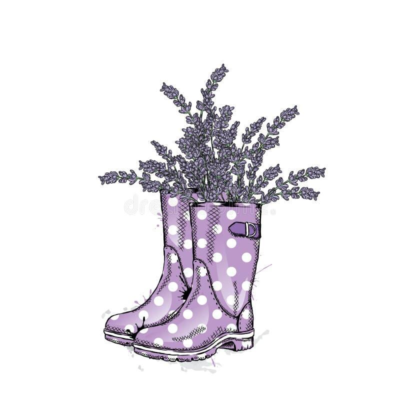 Mazzo di lavanda in stivali di gomma di un bello pois Illustrazione di vettore Piovuto appena sopra royalty illustrazione gratis