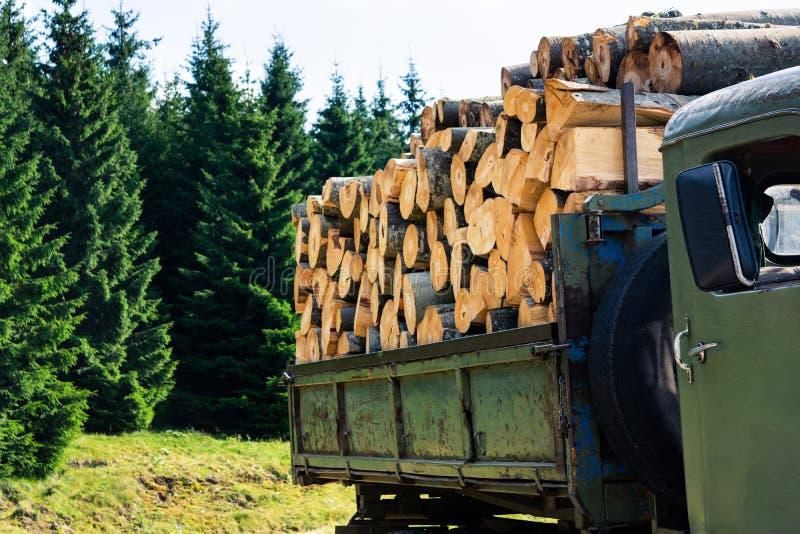 Mazzo di legna da ardere in un camion fotografia stock libera da diritti
