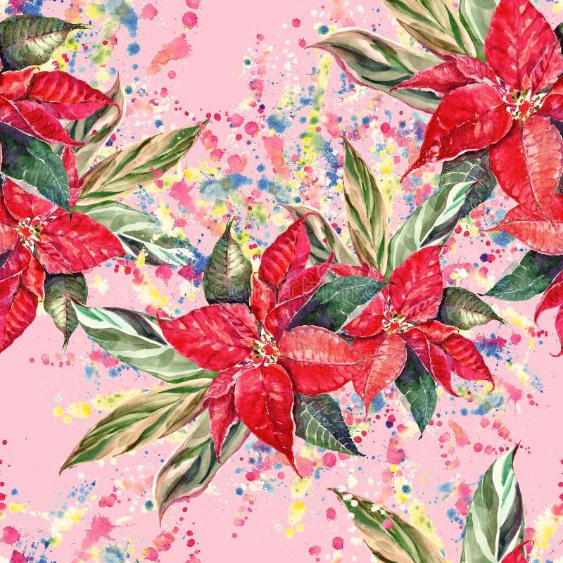 Mazzo di natale dell'acquerello Stella di Natale con il modello dei seamess delle foglie illustrazione di stock