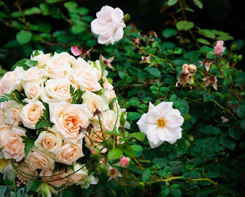 Mazzo di nozze delle rose bianche sugli ambiti di provenienza naturali verdi della foglia fotografia stock libera da diritti