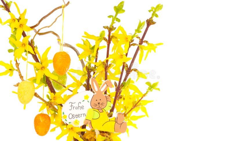 Mazzo di Pasqua, rami di forsythia immagini stock libere da diritti
