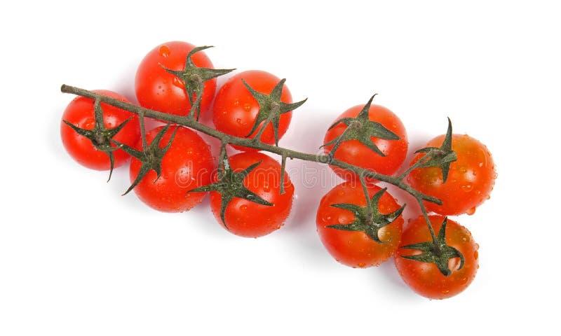 Mazzo di pomodori ciliegia isolati su bianco fotografia stock