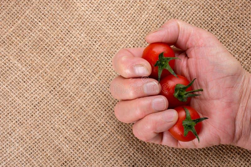 Mazzo di pomodori ciliegia maturi rossi a disposizione fotografie stock