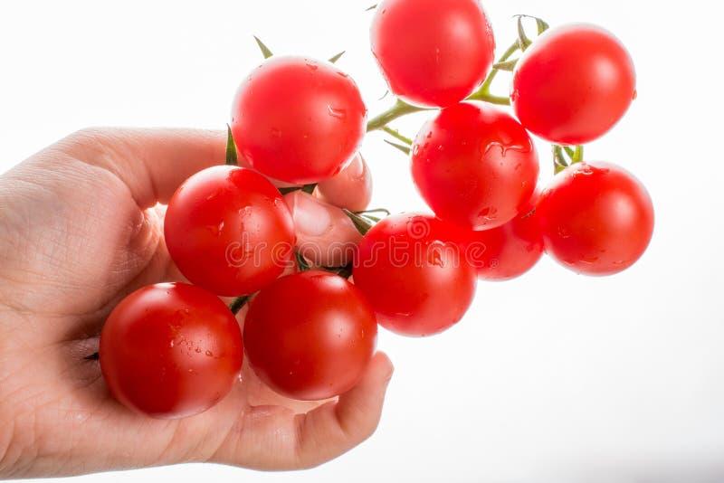 Mazzo di pomodori ciliegia maturi rossi a disposizione immagini stock