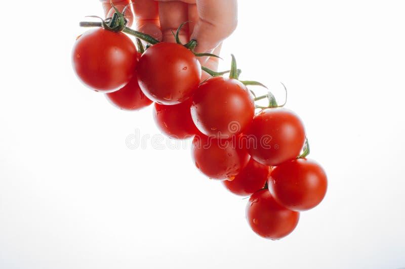 Mazzo di pomodori ciliegia maturi rossi a disposizione immagine stock