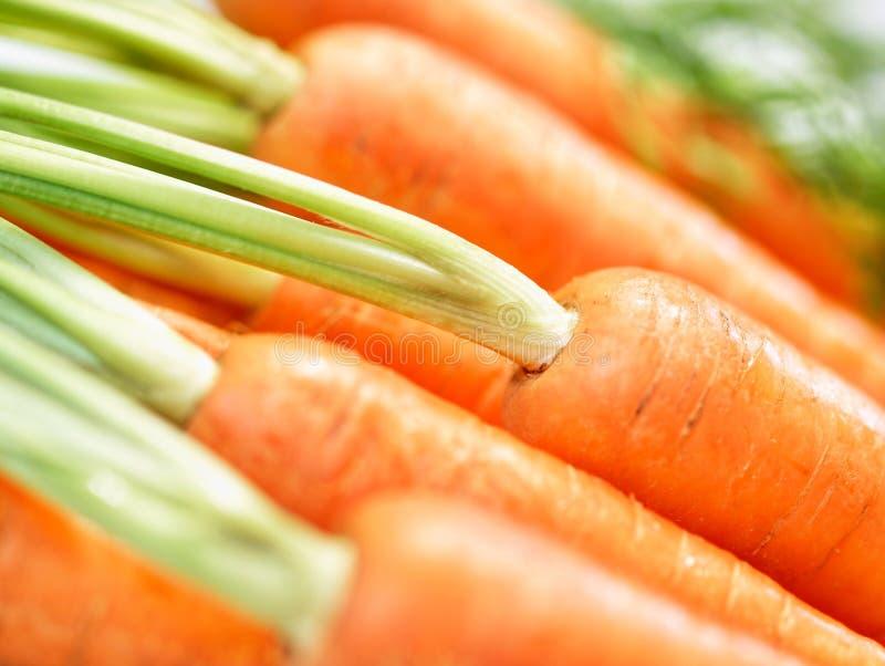 Mazzo di primo piano crunchy delle carote immagini stock libere da diritti