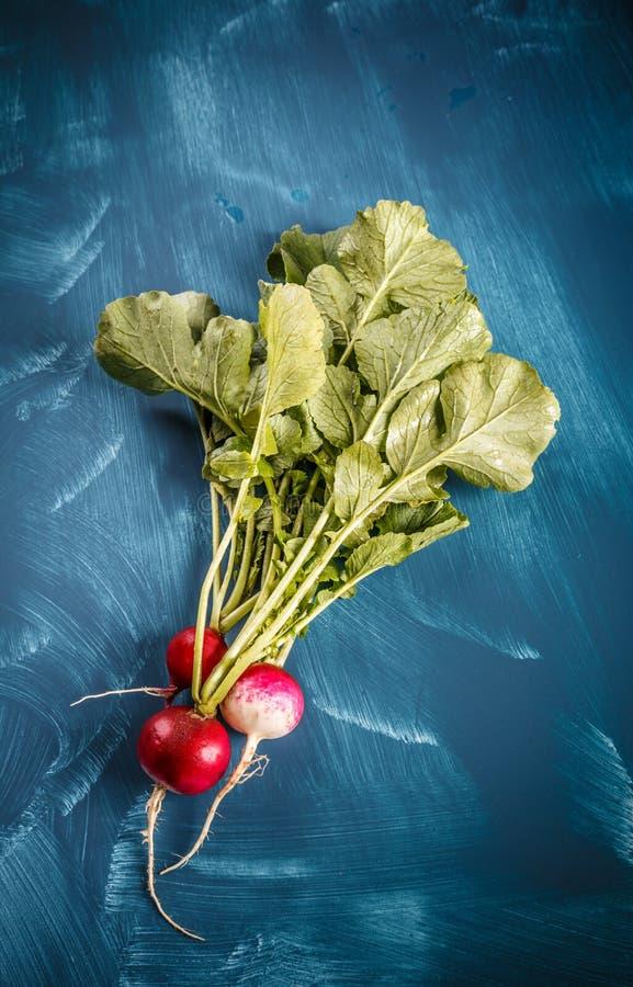 Mazzo di ravanelli freschi fotografie stock