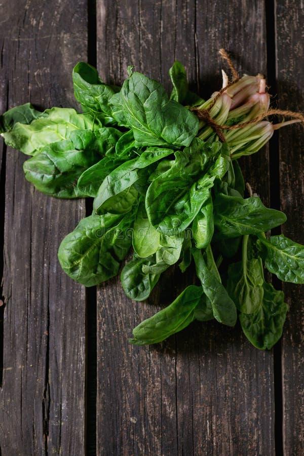 Mazzo di spinaci freschi fotografia stock