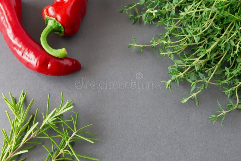 Mazzo di timo organico fresco, di rosmarini e di peperoncino rosso rosso fotografie stock