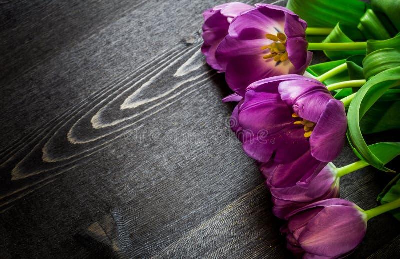 Mazzo di tulipani dentellare fotografie stock libere da diritti