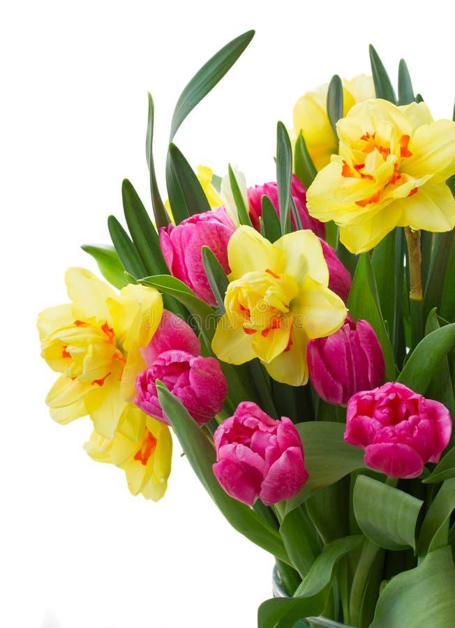 Mazzo di tulipani e di narcisi in vaso fotografia stock for Disegni e prezzi del mazzo
