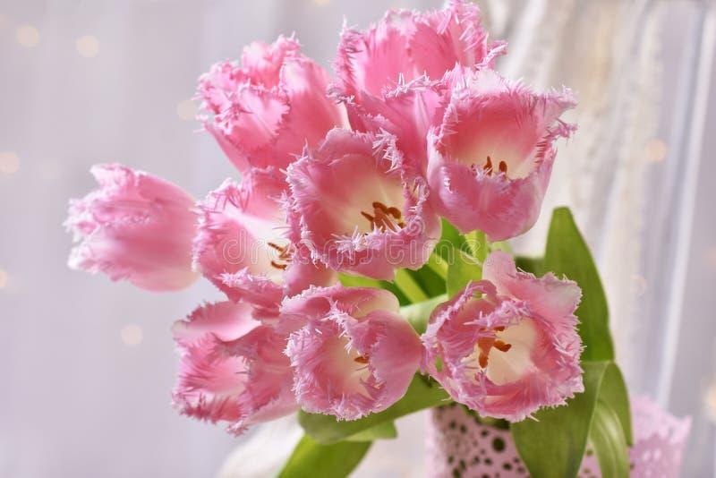 Mazzo di tulipani rosa degli arricciamenti di immaginazione immagine stock libera da diritti