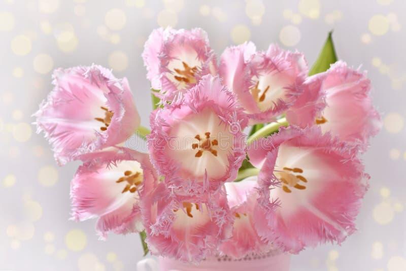 Mazzo di tulipani rosa degli arricciamenti di immaginazione immagini stock libere da diritti
