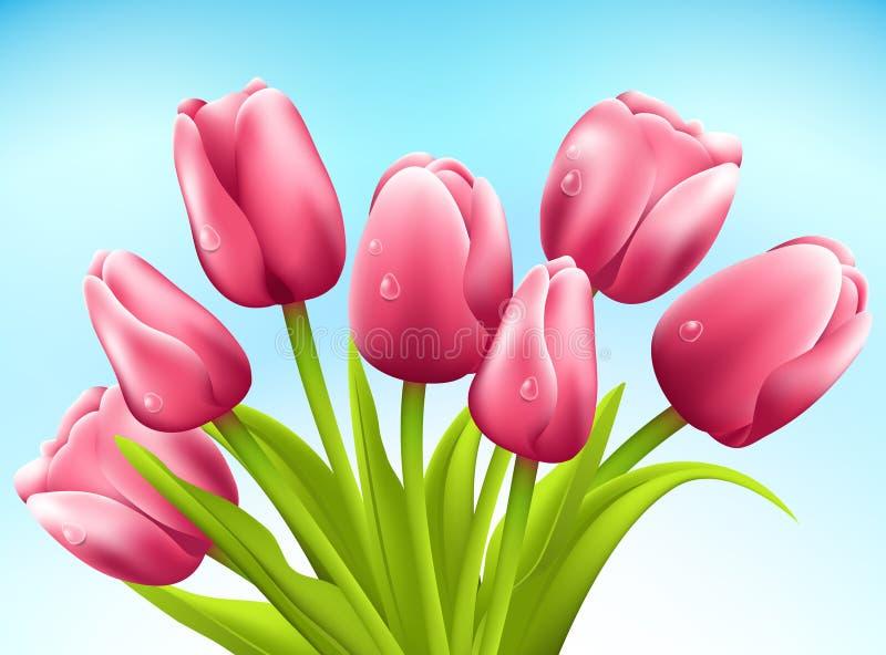 Mazzo di tulipani su fondo bianco. Vettore illustrazione vettoriale