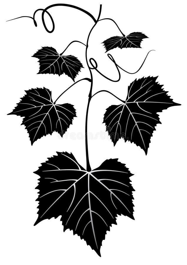 Mazzo di uva illustrazione di stock