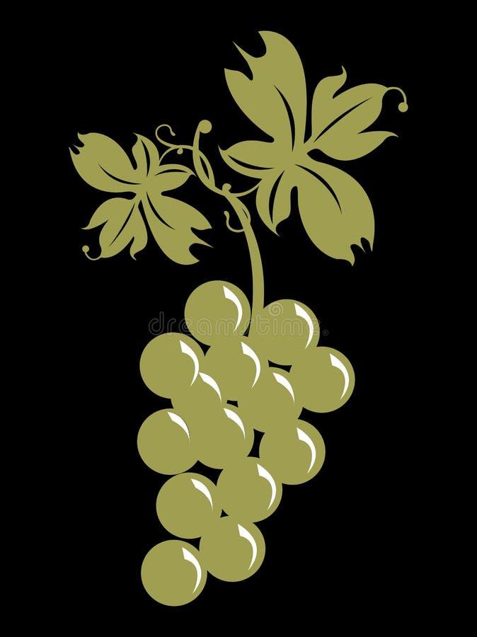Mazzo di uva e di fogli illustrazione di stock