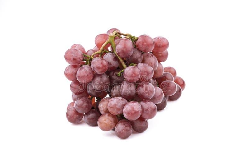 Mazzo di uva rossa, fresco con le gocce di acqua Isolato su bianco immagini stock libere da diritti