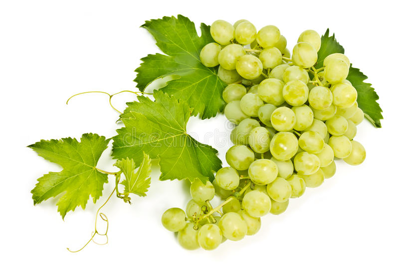 Mazzo di uva verde immagini stock