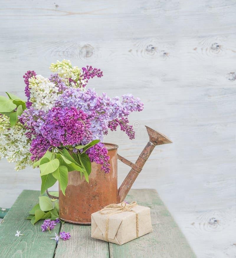 Mazzo di vario lillà in vecchio annaffiatoio fotografia stock libera da diritti