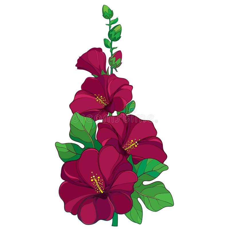 Mazzo di vettore con il rosea del Alcea del profilo royalty illustrazione gratis